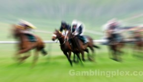 Bet on Horse Racing.